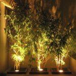 Lampu Sorot Pohon Hemat Energi